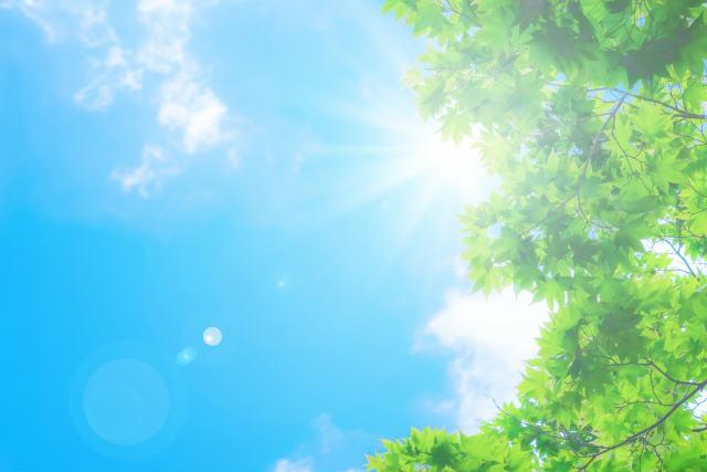 紫外線のダメージによる肌弾力の低下